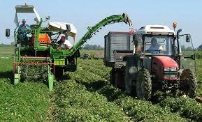 agricoltori12