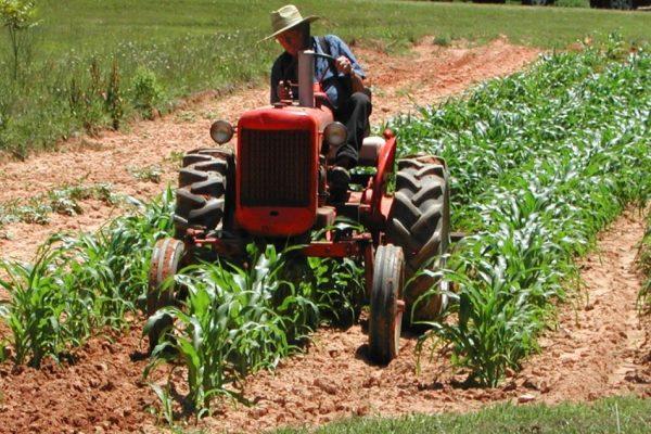 agricoltori11