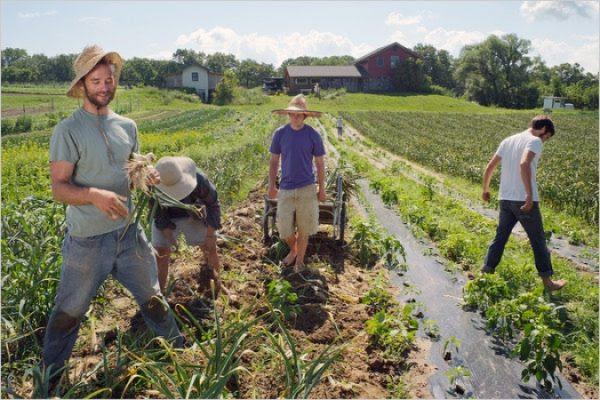 operai agricoli
