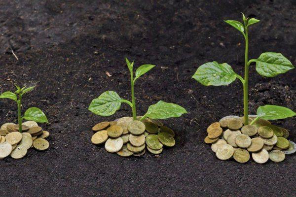 agri soldi