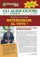 Referendum 2017
