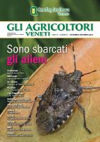 Gli Agricoltori Veneti 6-2018