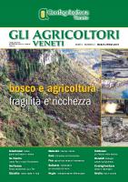 Gli Agricoltori Veneti 2-2019